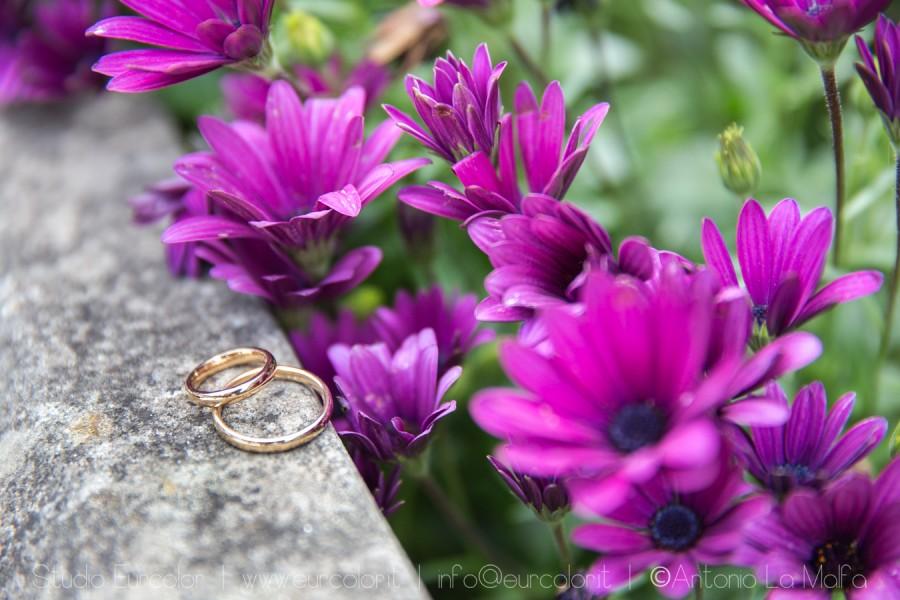 Parco museo Jalari wedding location - fotografo Antonio La Malfa